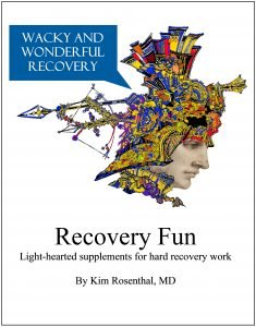 cover for recovery fun booklet